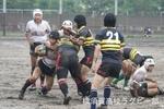 横須賀セブンス2013